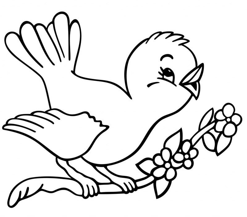 C 39 est le printemps oiseau printemps dessin - Dessin fleurs printemps ...
